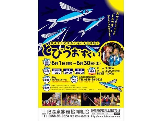 魚介シリーズ  飛んでいる『トビウオ』を見る_b0011584_12333005.jpg