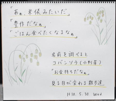 道端にて_b0364195_13201985.jpg