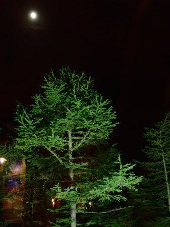 夜の休憩所_e0120896_07555161.jpg