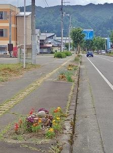 配りものの自転車散歩!_c0336902_19482407.jpg