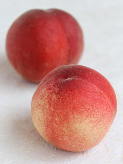 日本一早い桃、はじまりました!_c0053520_23265882.jpg