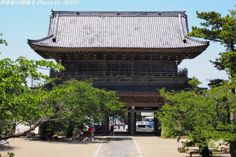 鎌倉の海辺を歩いて光明寺へ_d0358854_09073368.jpg