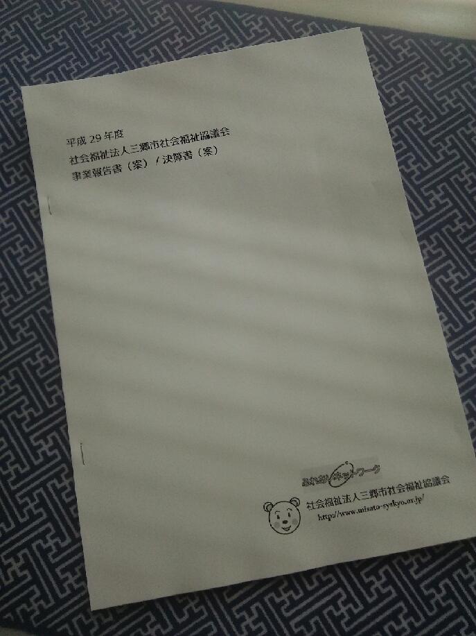 三郷市社協の平成29年度事業報告(案)・決算書(案)_d0081884_19541880.jpg