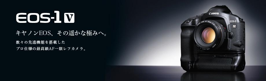 フィルムEOS_f0361287_22504093.jpg