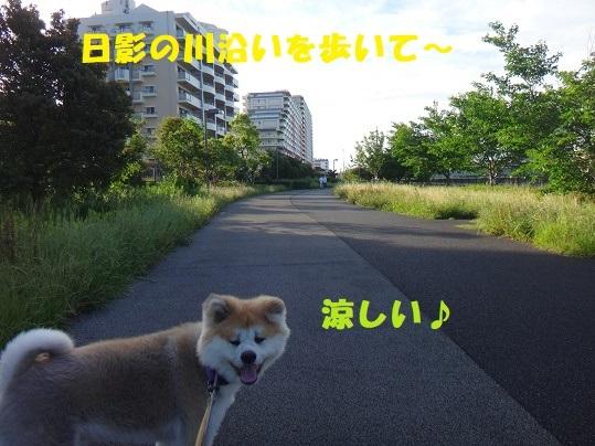 f0121712_14315788.jpg