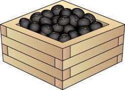 余った黒豆(松浦)_f0354314_22552609.jpg