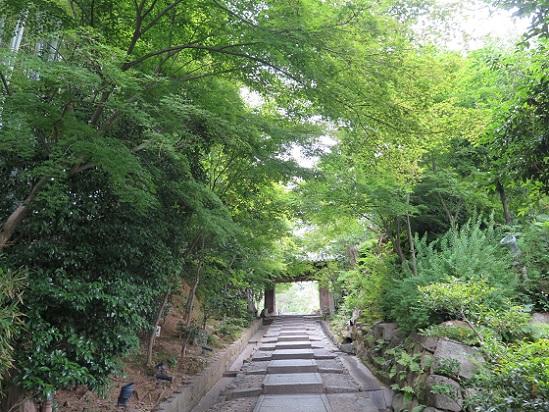 京都、高台寺_c0192215_10194566.jpg