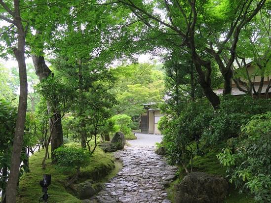 京都、高台寺_c0192215_1025154.jpg