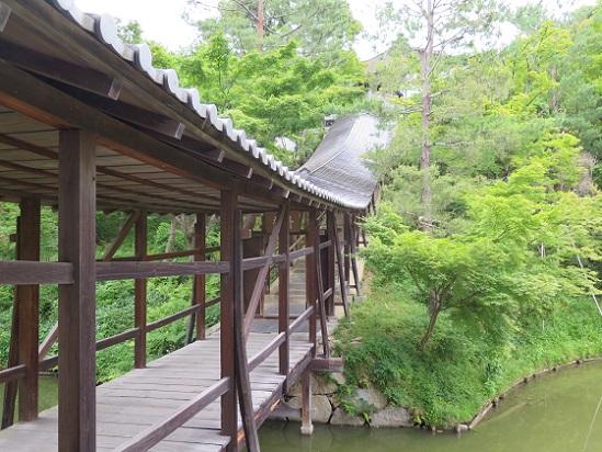 京都、高台寺_c0192215_1038599.jpg