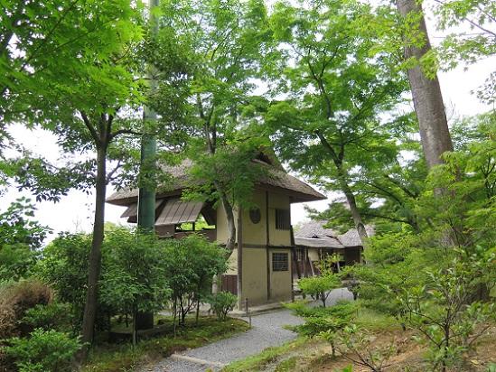 京都、高台寺_c0192215_18194268.jpg