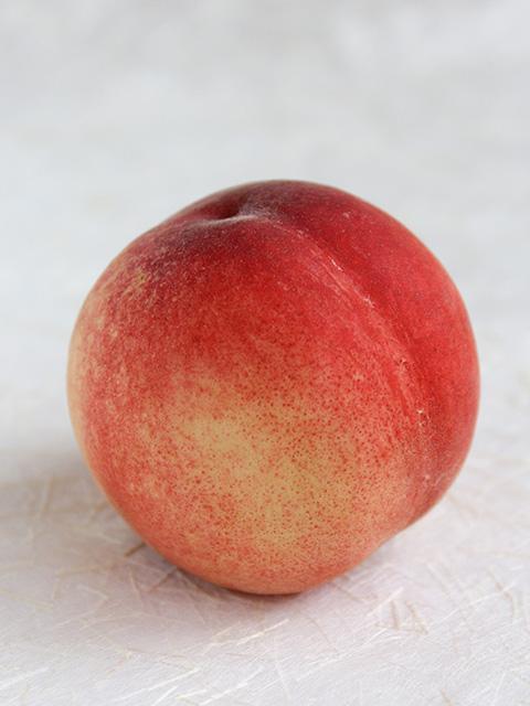 日本一早い桃、はじまりました!_c0053520_0304471.jpg