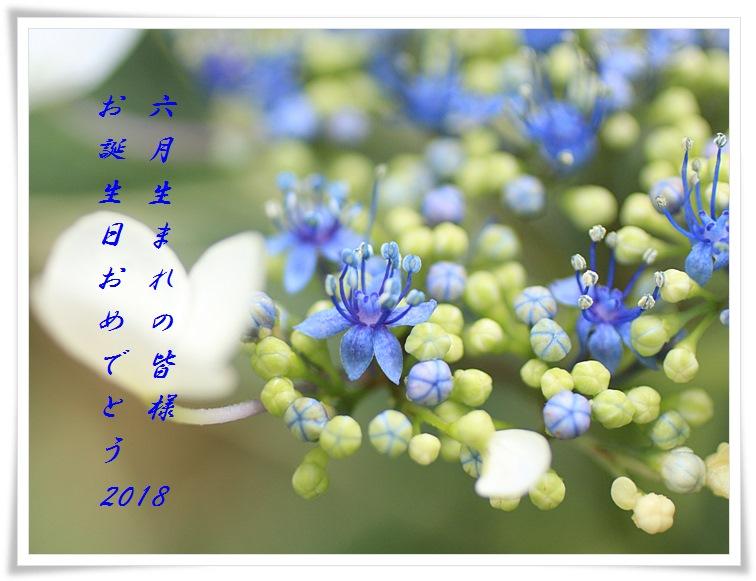 d0129921_2091373.jpg