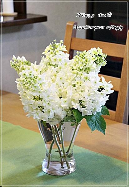 照焼きチキン弁当とカシワバ紫陽花♪_f0348032_18313376.jpg