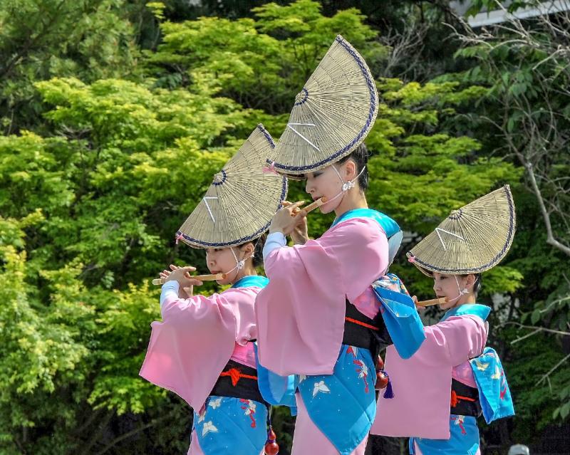四国の祭り 2018  うきよ連「徳島県 阿波踊り」_d0246136_19561900.jpg