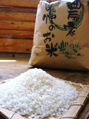 砂田米 『砂田のこだわりれんげ米』 種まき~苗床作り(2020年)_a0254656_17381661.jpg