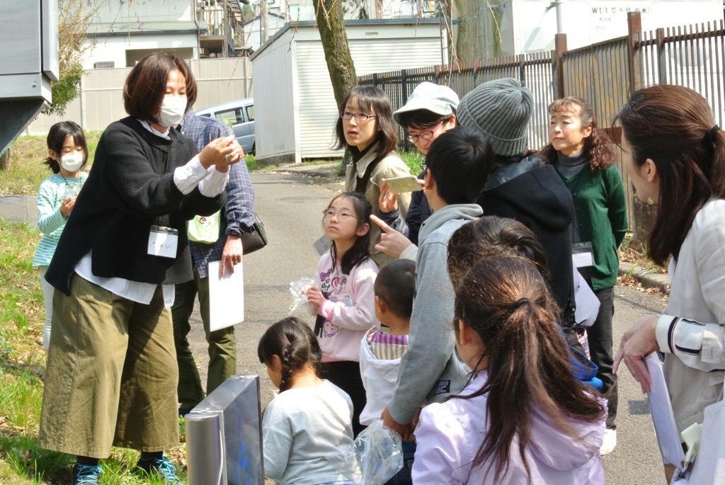 春のよもぎ団子作りと寄り合い会議_e0008880_23445486.jpeg