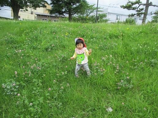 たんぽぽ組 園外保育_c0212598_17470005.jpg