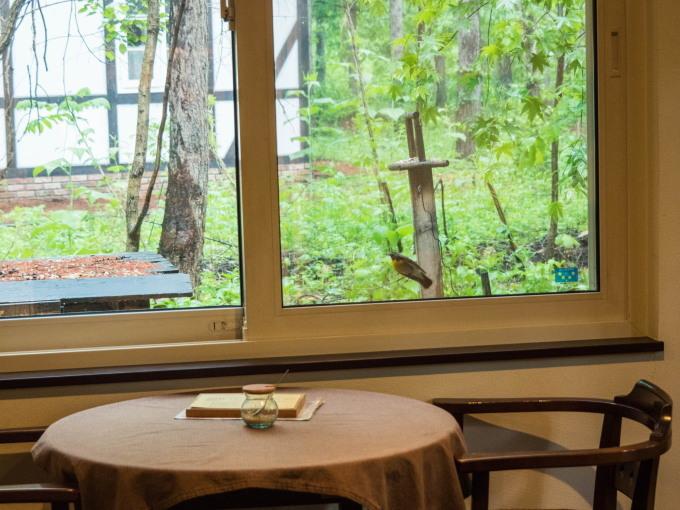 キビタキさんがカフェを覗いてる?・・新緑の季節です。_f0276498_22294496.jpg