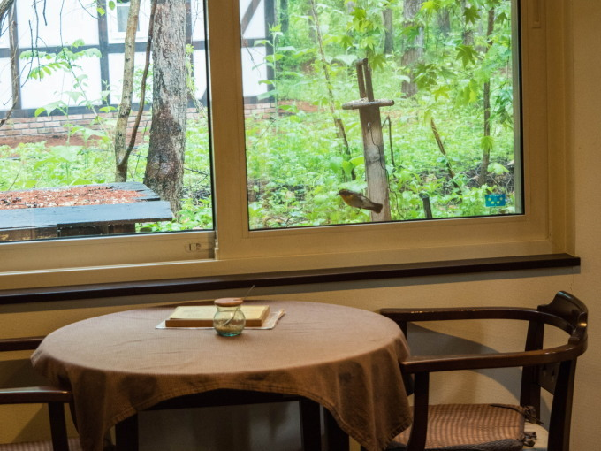 キビタキさんがカフェを覗いてる?・・新緑の季節です。_f0276498_22335883.jpg