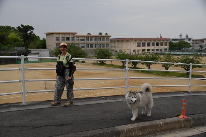 ジロちゃんとふれあい散歩 (*^_^*)_c0049299_21411663.jpg