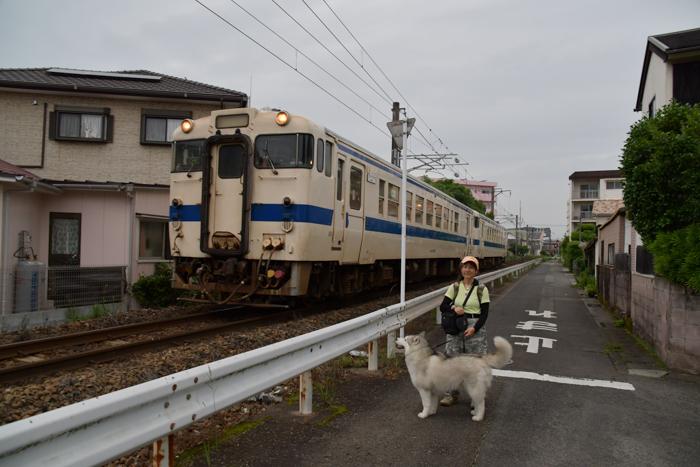 ジロちゃんとふれあい散歩 (*^_^*)_c0049299_21463061.jpg