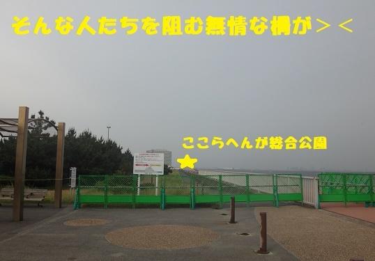 f0121712_11574384.jpg