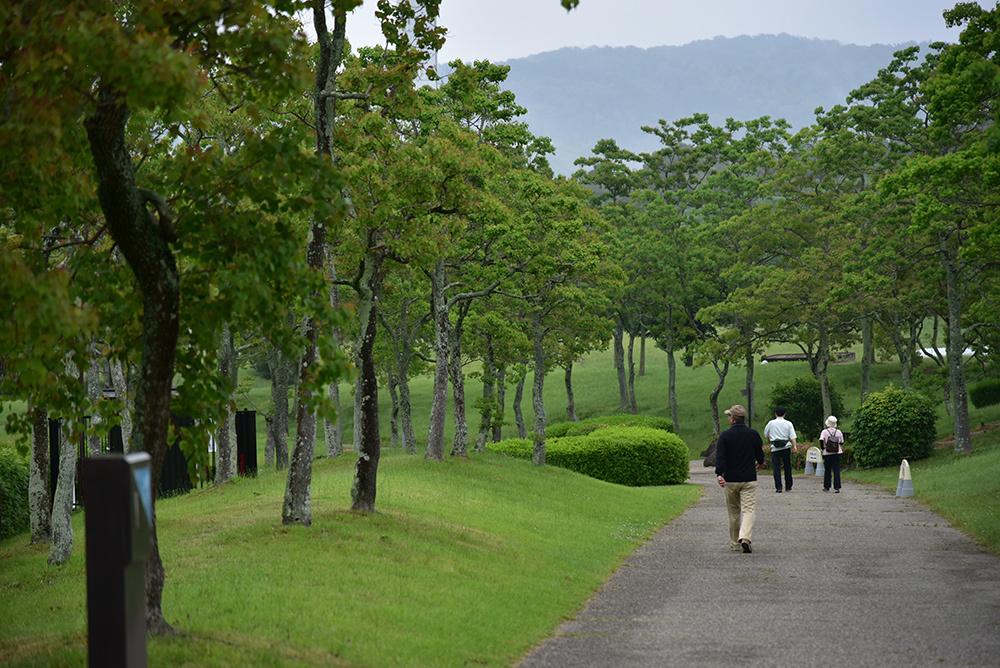 早朝散歩 太陽が丘_e0164563_12095994.jpg