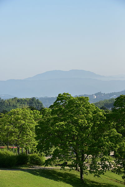 早朝散歩 太陽が丘_e0164563_12100125.png