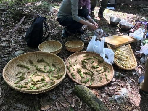 春の里山歩きと山菜とり_e0008880_00282051.jpeg