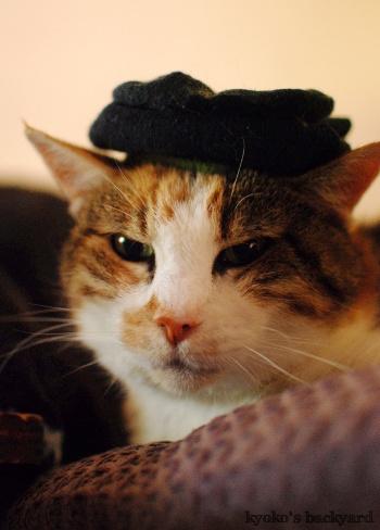 Sandyのソックス帽子_b0253205_06413904.jpg