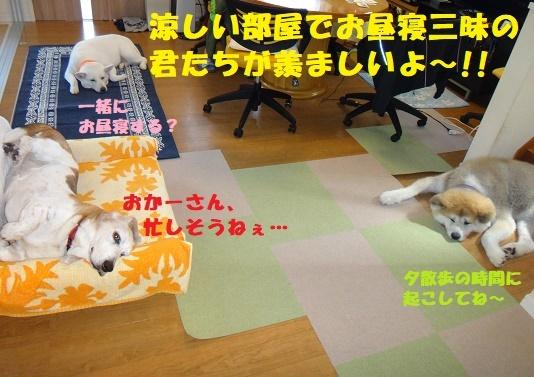 f0121712_13503680.jpg