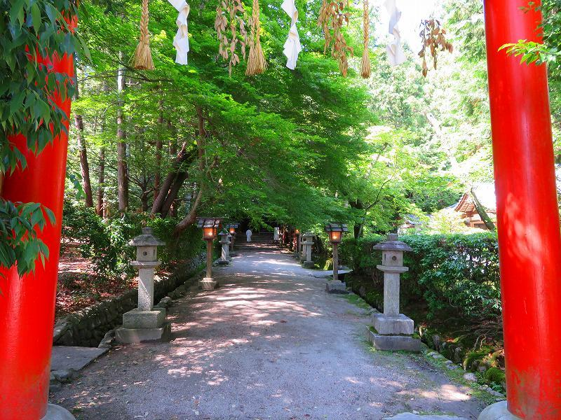 上賀茂神社社家町と大田神社20180601_e0237645_21570814.jpg