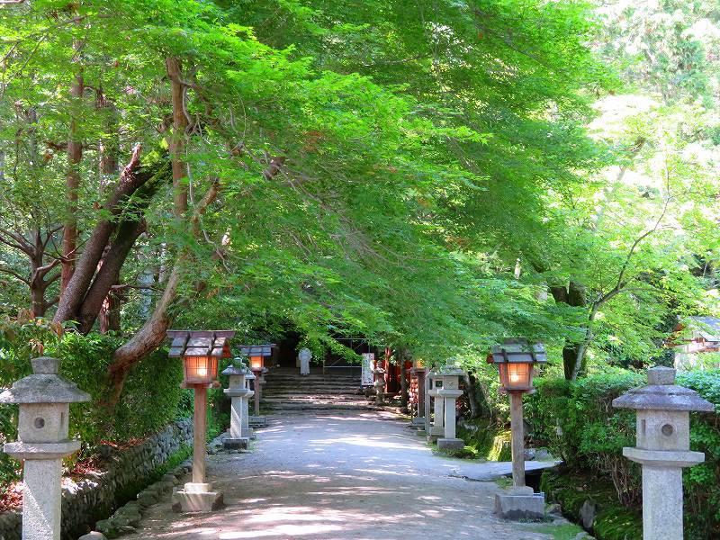 上賀茂神社社家町と大田神社20180601_e0237645_21570935.jpg