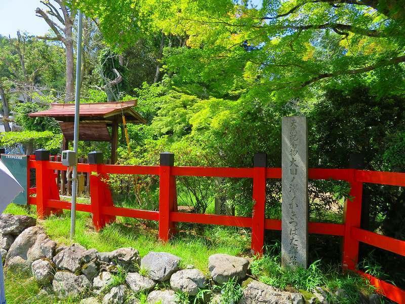 上賀茂神社社家町と大田神社20180601_e0237645_21570982.jpg