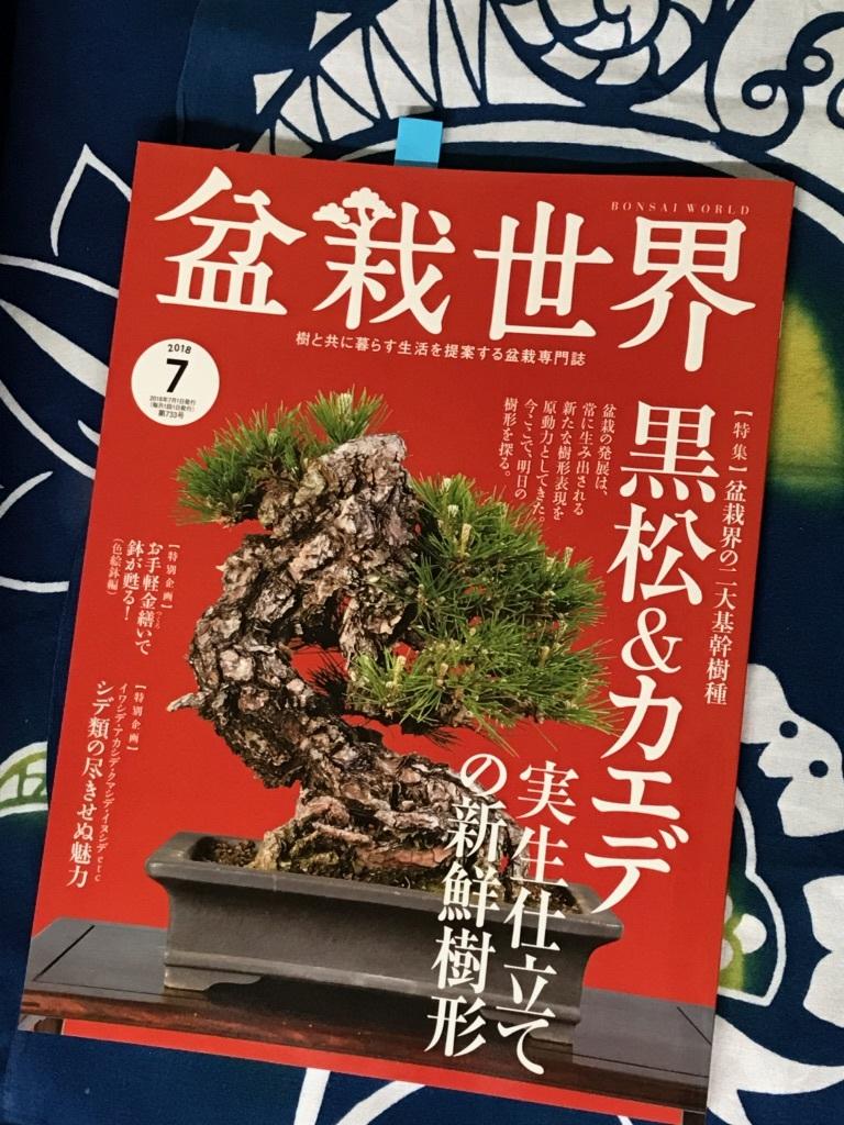 盆栽世界7月号_f0170915_12122950.jpg