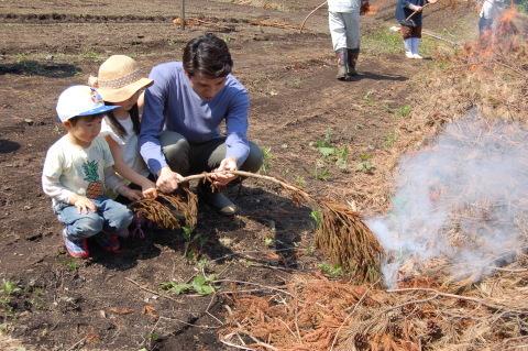 南郷地区の焼畑農法を体験してきました!_e0132433_16384646.jpg