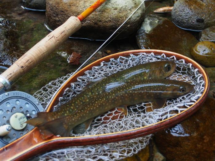 2018  庄川釣行、ライズを釣りあがる。_c0197578_09244878.jpg