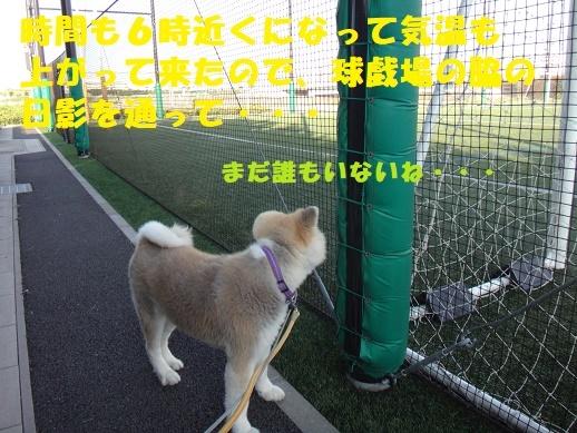 f0121712_09014583.jpg
