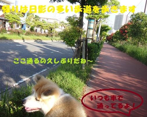 f0121712_09084349.jpg