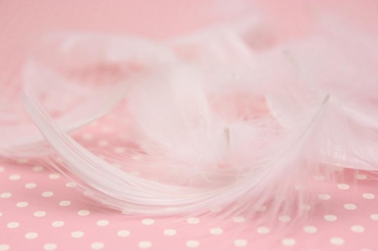 天使の羽根が降ってきたら。~良きメッセージがいっぱい~_b0298740_15584362.jpg