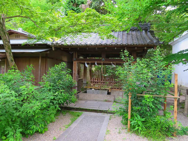 梨木神社(京都御苑)20180604_e0237645_19090376.jpg