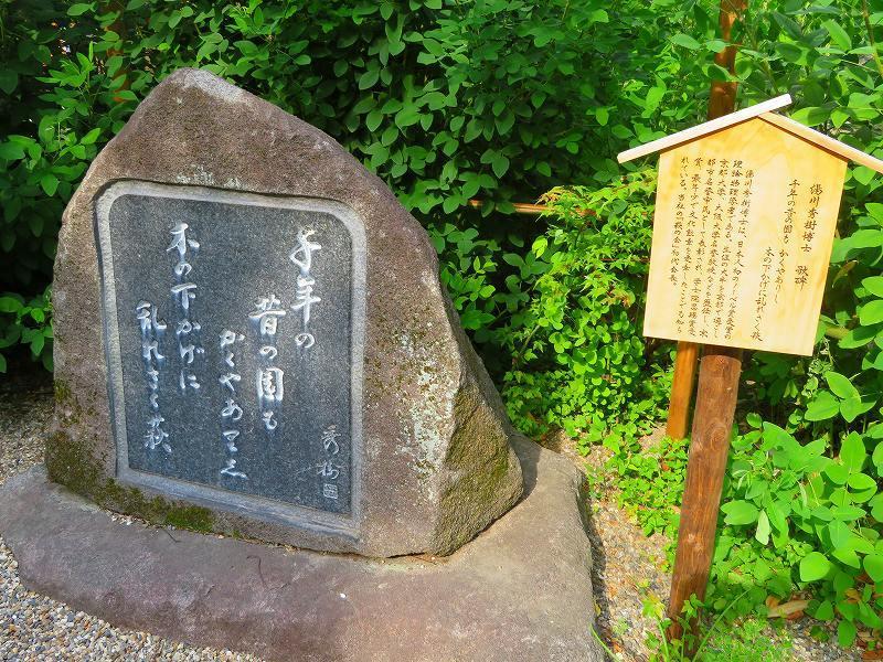 梨木神社(京都御苑)20180604_e0237645_19103985.jpg