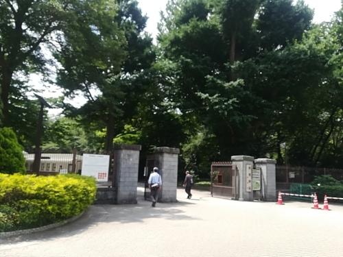 新宿御苑と銀座シックス_a0111166_17143552.jpg