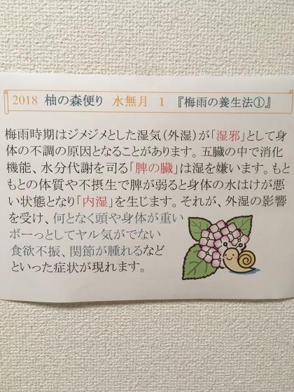 梅雨の養生法①_f0354314_09382561.jpg