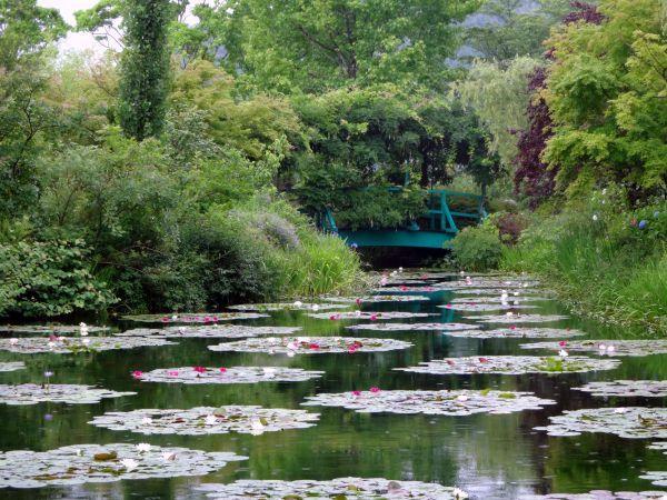 梅雨入りしましたね。~北川村「モネの庭」マルモッタン~_d0145934_15545954.jpg