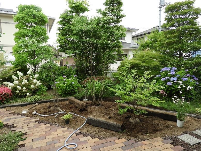 涼しげな風が吹くような雑木の庭へ。_e0356655_17455096.jpg