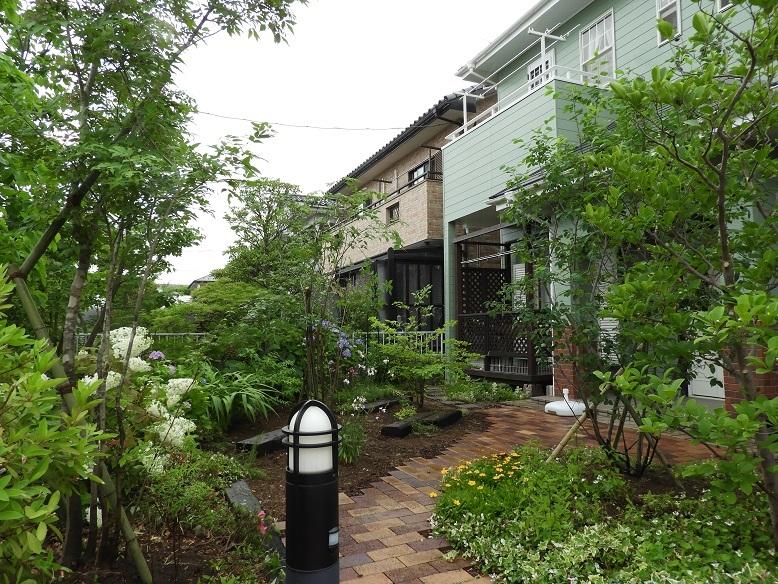 涼しげな風が吹くような雑木の庭へ。_e0356655_17493540.jpg