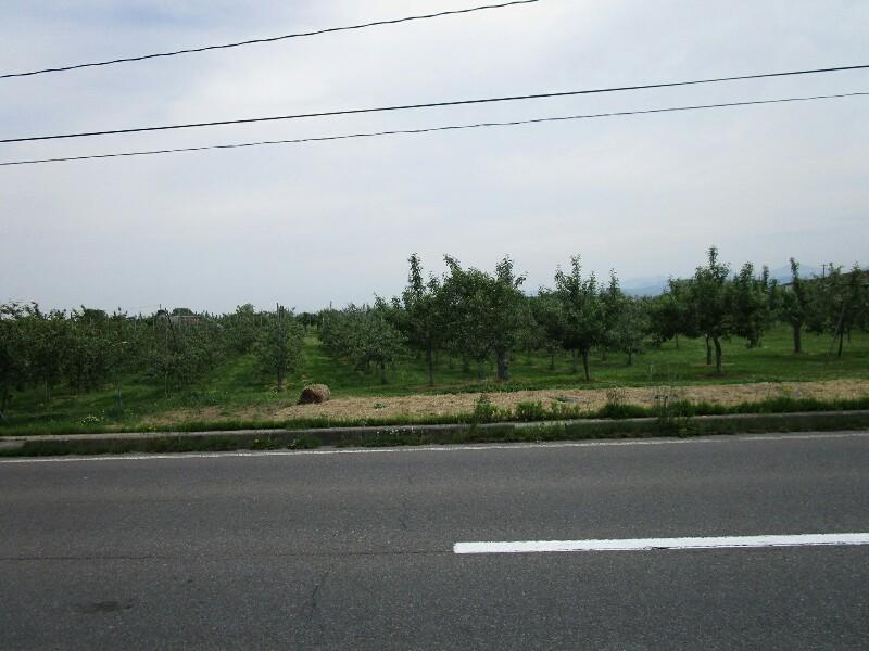 45日目【大館−青森市】いよいよ北海道_e0201281_05022487.jpg