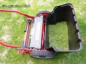キレッキレの芝刈り機がやって来た♪_f0368691_19143805.jpg