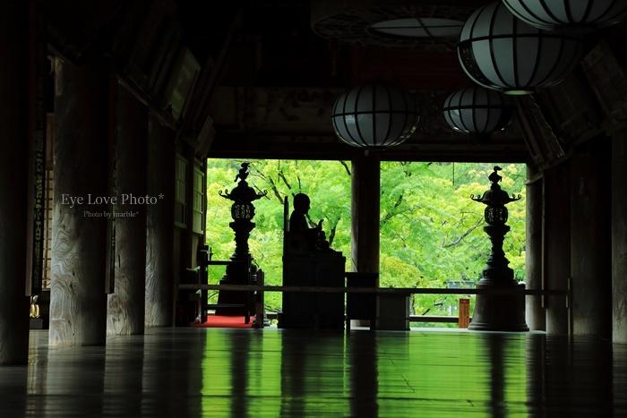雨の長谷寺_f0353524_22295226.jpg